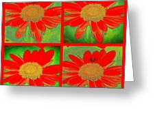 Daisy Perspective Collage Greeting Card