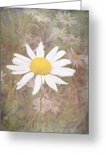 Daisy Textured Greeting Card