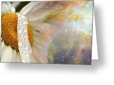 Daisy With Hubble Cosmos Greeting Card