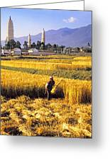 Dali Harvest Greeting Card