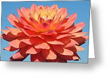 Dalia In The Sky Greeting Card