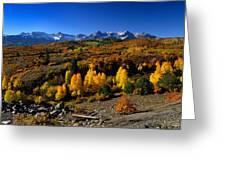 Dallas Divide Fall Colors Greeting Card