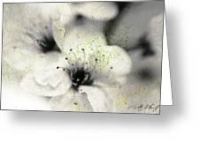 Damaged Blooms Greeting Card