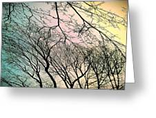 Dance Of Spring Greeting Card