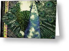 Dance Of The Peacock Greeting Card