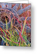 Dance Of The Wild Grass Greeting Card