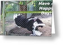 Dancing Big Bird Happy Day Greeting Card