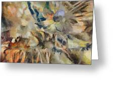 Dancing Dreams Greeting Card by Joe Misrasi