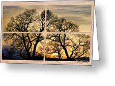 Dancing Forest Trees Picture Window Frame Photo Art View Greeting Card