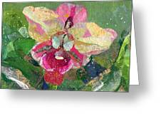 Dancing Orchid I Greeting Card