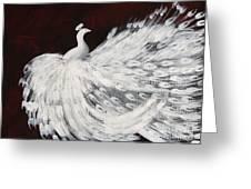 Dancing Peacock Burgundy Greeting Card