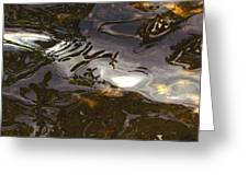 Dancing Water Greeting Card