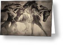 Dancing With Stallions Greeting Card