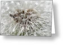Dandelion Ant Trap Greeting Card
