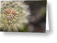 Dandelion Art - So It Begins - By Sharon Cummings Greeting Card