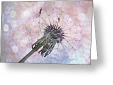 Dandelion Before Pretty Bokeh Greeting Card