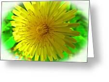 Dandelion Blossom Greeting Card