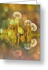 Dandelion Delight Greeting Card