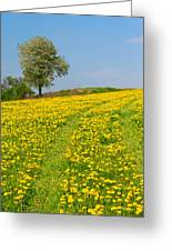 Dandelion Meadow And Alone Tree  Greeting Card