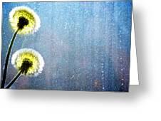 Dandelion Parachute Balls Greeting Card