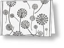 Dandelion Seeds Grey Greeting Card