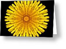 Dandelion V Flower Mandala White Greeting Card