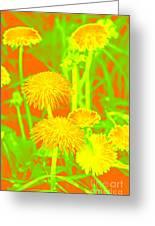 Dandelions Greeting Card