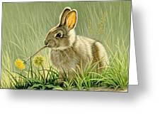 Dandi-nibbler Greeting Card