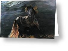 Dappled Horse In Stormy Light Greeting Card