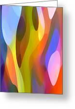 Dappled Light 3 Greeting Card