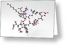 Daptomycin Antibiotic Molecule Greeting Card