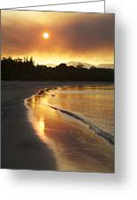 Dare To Shine Greeting Card by Lee Stickels