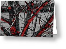 Dark Branches Greeting Card