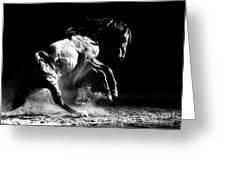 Dark Dance Greeting Card