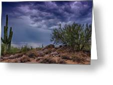 Dark Desert Skies  Greeting Card