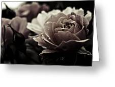 Dark Flower 20 Greeting Card