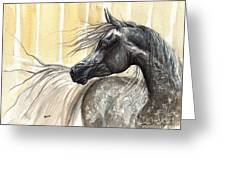 Dark Grey Arabian Horse 2014 02 17 Greeting Card