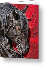 Dark Horse Against Red Dress Greeting Card by Jennie Marie Schell