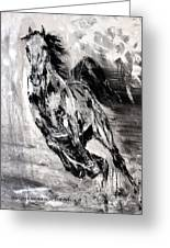Dark Horse Contemporary Horse Painting Greeting Card