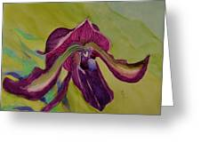 Dark Orchid Greeting Card