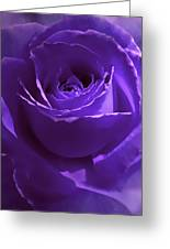 Dark Secrets Purple Rose Greeting Card by Jennie Marie Schell