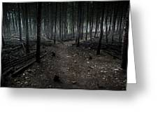 Dark Trail Greeting Card