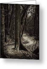 Dark Winding Path Greeting Card