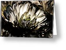 Darkness Prevails Greeting Card