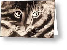 Darling Cat Greeting Card