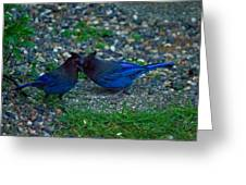 Darling I Have To Tell You A Secret-sweet Stellar Jay Couple Greeting Card