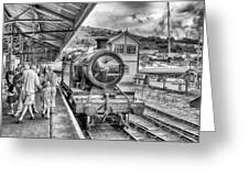 Dart Valley Railway Greeting Card