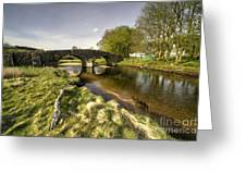 Dartmoor Bridge  Greeting Card