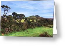 Dartmoor Greeting Card