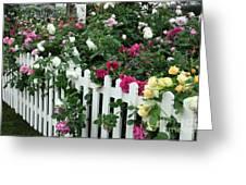 David Austin Roses Chelsea Flower Show Greeting Card